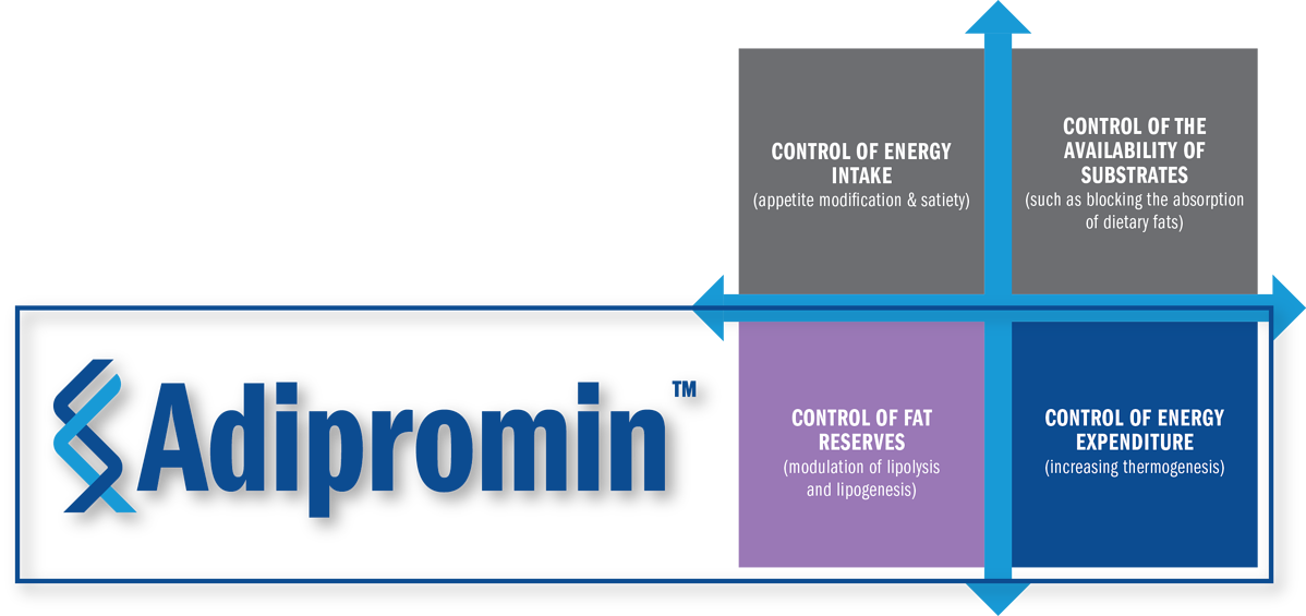 Adipromin Boxes Graphic
